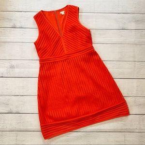 JCrew Poppy Lace Overlay Tank Fit & Flare Dress 12